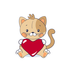 A sweet kitten sits and holds big red heart vector