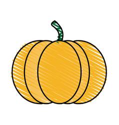 Color crayon stripe orange pumpkin fruit food vector