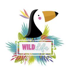 Cute wildlife animals cartoons vector