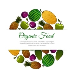 Organic food fruits banner vector