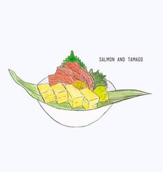fresh salmon and egg roll sashimi hand draw vector image