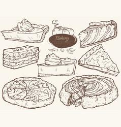 bakery pumpkin pie vector image