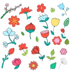 Different color flowers vector