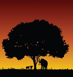 elephant family and tree vector image