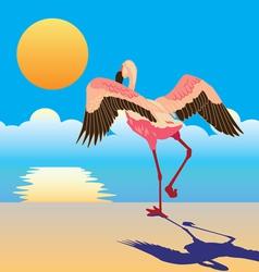 Flamingo on shore vector