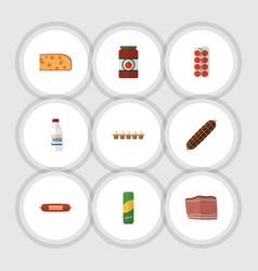 flat icon meal set of bottle ketchup smoked vector image