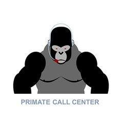Primate call center Monkey and headset Gorilla vector image