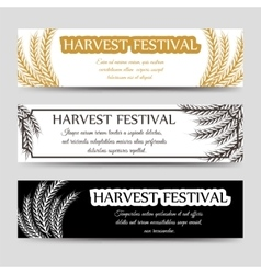Agriculture horizontal banner set with wheat vector image vector image