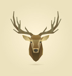 deer portrait realistic vector image vector image