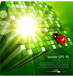 green cubes and ladybug vector image vector image