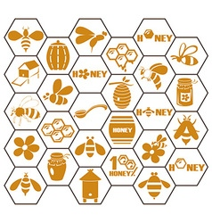Icons bee and honey in comb vector