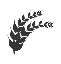laurel branch nature icon graphic vector image