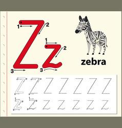 Letter z tracing alphabet worksheets vector