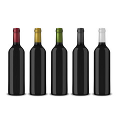 set 5 realistic black bottles of wine vector image vector image