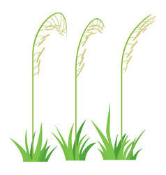 three plants icon cartoon style vector image