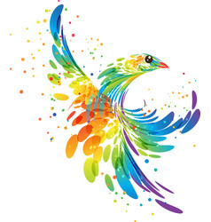 splash fantasy bird vector image