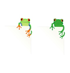 2 frogs in corner of page vector image