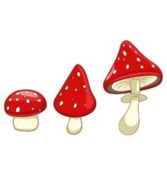 Amanita toxic mushroom vector