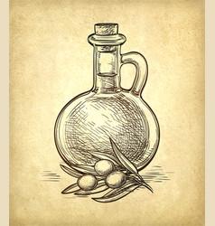 bottle of olive oil and olive branch vector image