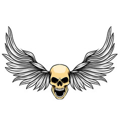 dashing wings with human dead skull for vector image