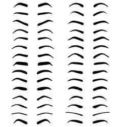 eyebrows tattoo design vector image