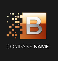 letter b logo symbol in the colorful square vector image