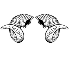 Ram On Ram Horns vector