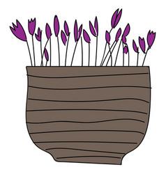 simple purple flowers in brown flower pot on vector image
