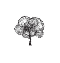 tree silhouettes on white background vector image