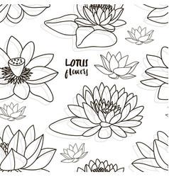 set of lotus flowers pattern vector image