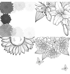 beautiful set monochrome black and white vector image