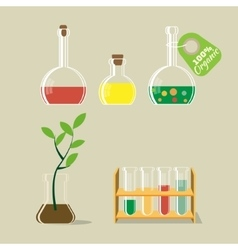 Chemical flask and plant vector