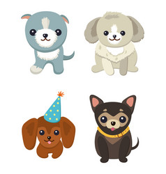 four pretty puppies isolated on white background vector image