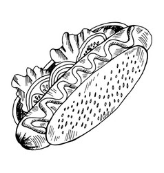 Hot dog juicy in a bun with sesame seeds lettuce vector