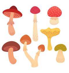 set cartoon flat mushrooms vector image