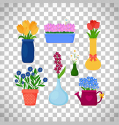 spring flowers in pots and vases vector image