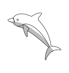 Isolated dolphin design vector
