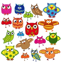 Set of eighty colourful owls vector image