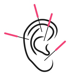 Ear acupuncture vector image vector image