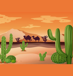 Desert scene with cactus and sunset vector