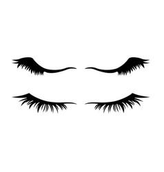 Eyelashes on white background vector