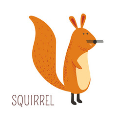 ginger squirrel childish cartoon book character vector image