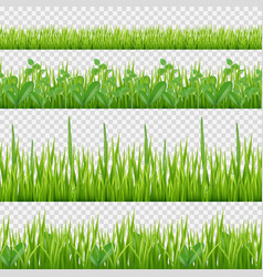 grass herbs pattern nature symbols leaves vector image