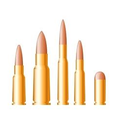 Set gun bullets and ammunition vector