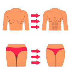 Set of white woman body part fat and sporty body vector