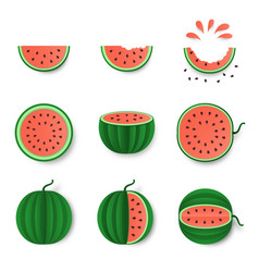 watermelon whole half and cut set isolated on vector image