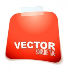 square tag red vector image vector image