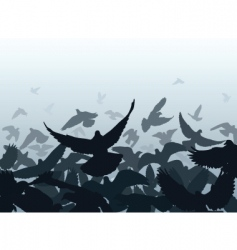 pigeon edge vector image vector image