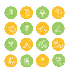 Agricultural commodities products thin line icons vector