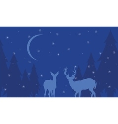 At night deer scenery winter of silhouettes vector image